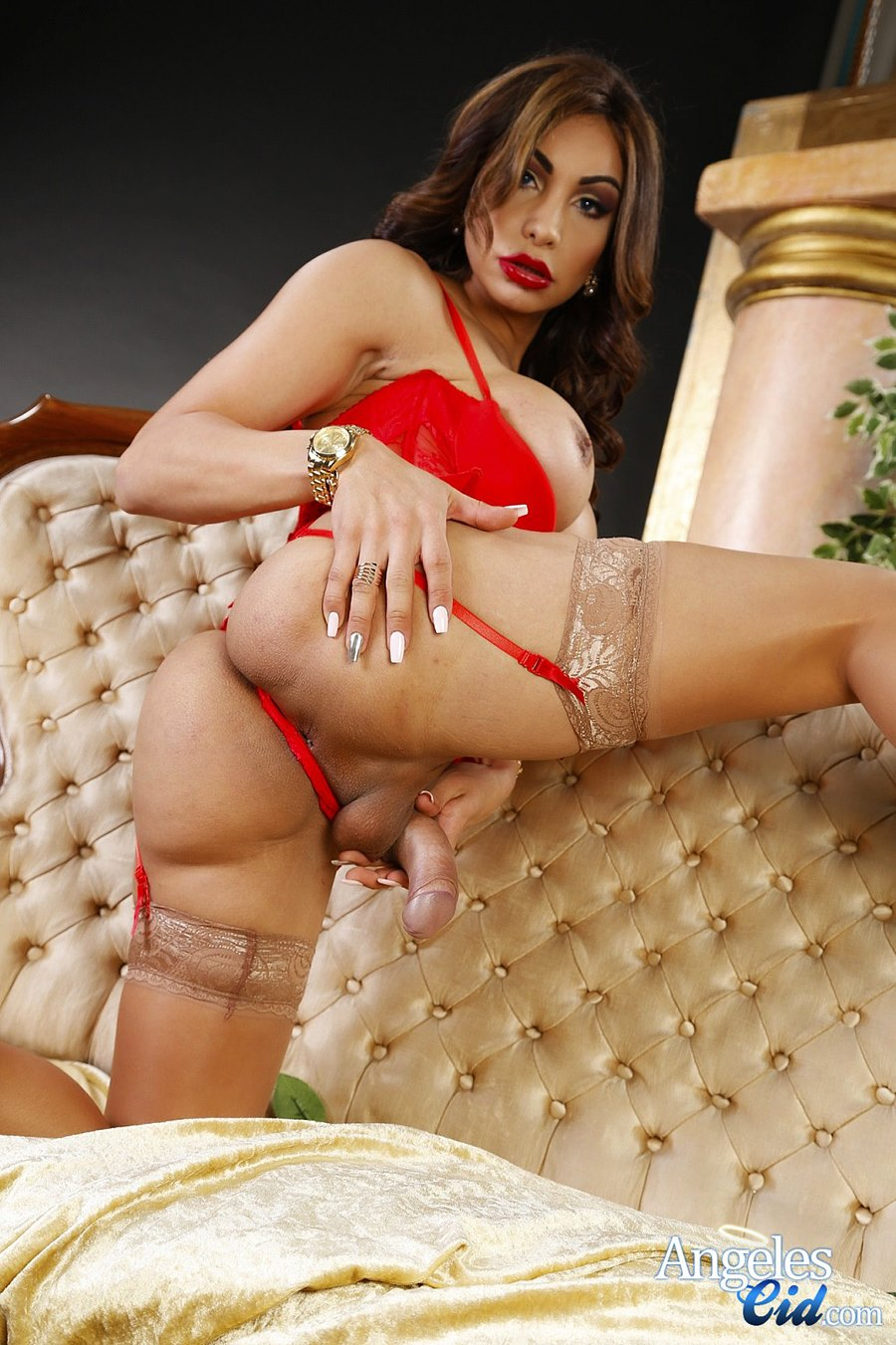Red lingerie and spread tranny ass